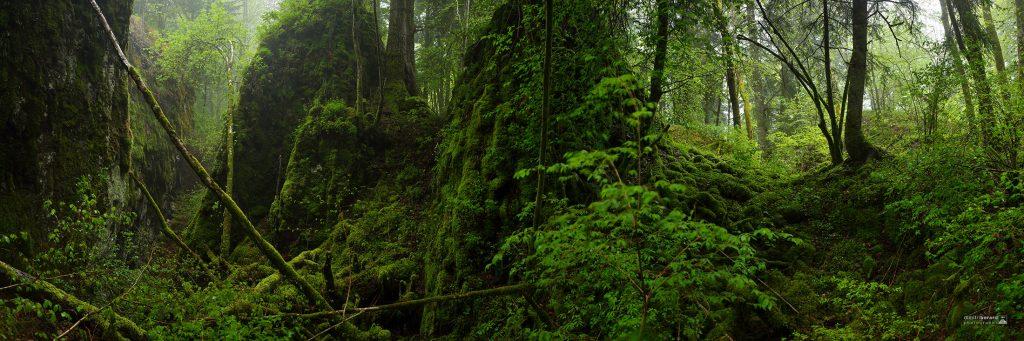 panoramique dimitri-berard auvergne cantal puy-de-dôme lioran tranchades-de-laquairie condat riom-ès-montagne